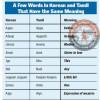 தமிழ், கொரிய மொழிகளுக்கு இடையிலான ஒற்றுமைகள்!