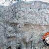 கிருஷ்ணகிரி மாவட்டம், ஓசூர் அருகே யானையுடன் சண்டையிடும் வீரனின் நடுகல் கண்டுபிடிப்பு!