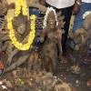 300 ஆண்டுகள் பழமை வாய்ந்த நான்கு ஐம்பொன் சிலைகள் கண்டெடுப்பு!