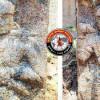 ஜவ்வாது மலையில் குலோத்துங்கச் சோழன் காலத்து கல்வெட்டு கண்டுபிடிப்பு!