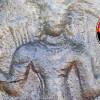 தலைவாசல் அருகே 12ம் நூற்றாண்டை சேர்ந்த நடுகற்கள் கண்டுபிடிப்பு!