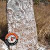 நாட்றம்பள்ளி அருகே கி.பி. 9-ம் நூற்றாண்டை சேர்ந்த நிலக்கொடை கல்வெட்டு கண்டுபிடிப்பு!