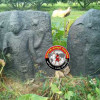 ஜவ்வாதுமலை அருகே நடுகல் மற்றும் விஷ்ணு சிலை கண்டுபிடிப்பு!