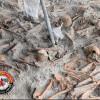 மன்னாரில் கண்டுபிடிக்கப்பட்ட மனித எச்சங்கள் மாதிரிகள் ஆய்வுக்கு அமெரிக்கா செல்கிறது!