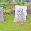 ஆம்பூர் அருகே கி.பி. 7-ஆம் நூற்றாண்டைச் சேர்ந்த 5 நடுகற்கள் கண்டுபிடிப்பு!