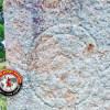 முசிறி அருகே 300 ஆண்டுகளுக்கு முற்பட்ட திருவாழிக்கல் கண்டுபிடிப்பு!
