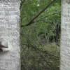 1,000 ஆண்டு பழமையான கல்வெட்டுகள் கண்டுபிடிப்பு!