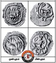 பல்லவ அரசன் வீரகூர்ச்சவர்மன் காசுகள் கண்டுபிடிப்பு!