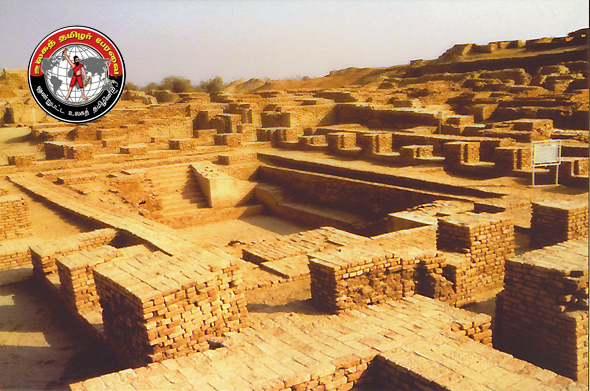 the indus valley civilizations is believed to be a dravidian civilisations destroyed by aryans invaders: mohenjo daro site