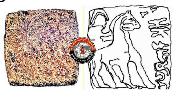 குதிரையில் அமர்ந்திருக்கும் வீரருடன் 'அதியமான்' பெயர் பொறித்த கி.மு. 10 -ஆம் நூற்றாண்டு நாணயம் கண்டறியப்பட்டுள்ளது!