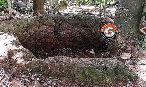 ஏற்காடு மலை பகுதியில் 2,000 ஆண்டுகள் பழமையான முதுமக்கள் தாழிகள் கண்டுபிடிப்பு!