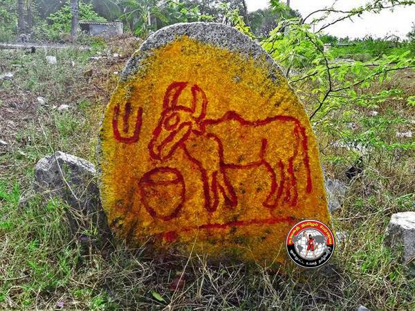 """நாட்றாம்பள்ளி அருகே கி.பி. 6-ம் நூற்றாண்டு """"மாட்டுத்தம்பிரான்"""" என்று அழைக்கப்படும் பழமையான 'காளை நடுகல்' கண்டுபிடிப்பு!"""