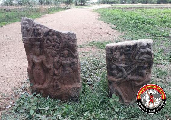 ஓட்டப்பிடாரம் அருகே சோழர் கால நடுகல் - சதிகல் கண்டுபிடிப்பு!