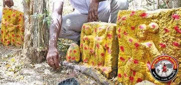 தேக்கம்பட்டியில் பழமை வாய்ந்த காட்டுக் கோயில்களின் நடுகல் கண்டுபிடிப்பு!